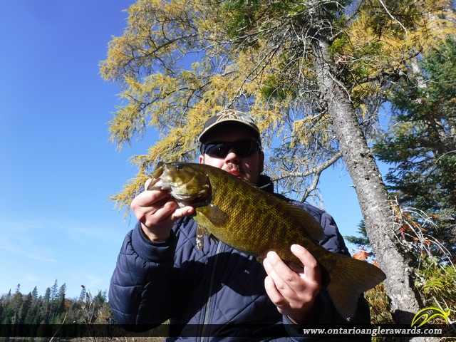 "18.5"" Smallmouth Bass caught on Mink Lake"