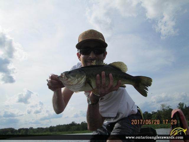 "18"" Largemouth Bass caught on Little Lake"