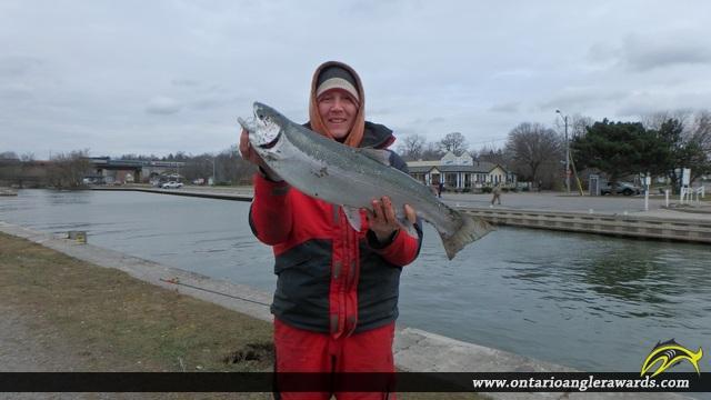 "29.00"" Rainbow Trout caught on Ganaraska River"